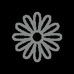 calicozzo-margherita